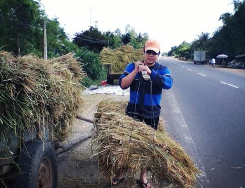 xa vo con, cong vinh tro tai nau nuong phuc vu dong doi - 6