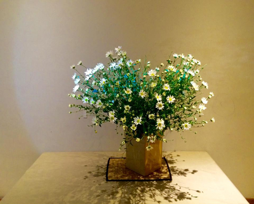 """neu cam cuc hoa mi mai chang dep, ban can hoc ngay bi kip """"lo long lo"""" - 5"""