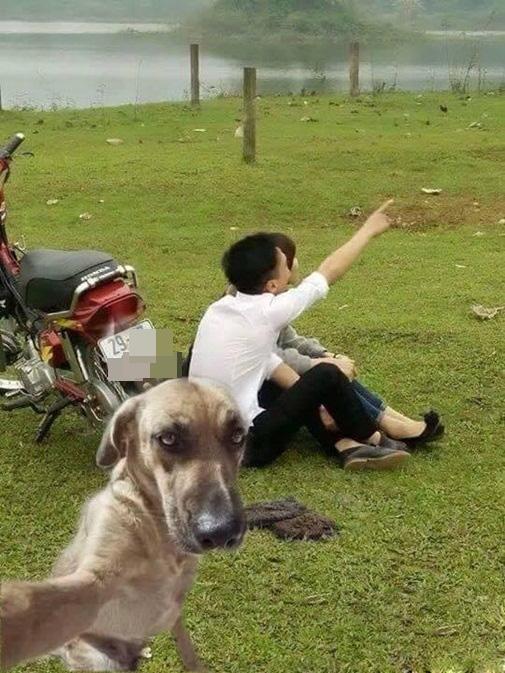 cac cap doi khoc thet vi trot dai len mang nho photoshop - 4