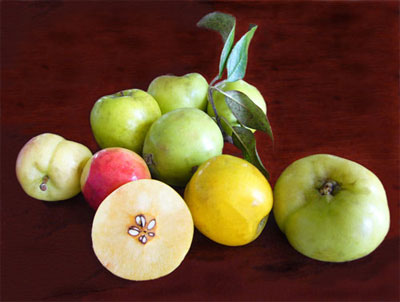 Bà bầu không nên ăn quả gì? - 1