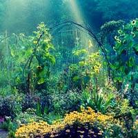 10 vườn hoa đẹp nhất hành tinh