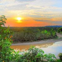 Hùng vĩ thay rừng rậm Amazon...
