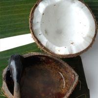 Dầu dừa - Tinh dầu cho sức khỏe và làm đẹp
