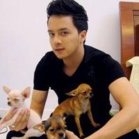 Kỷ lục vui về những chú cún của sao Việt