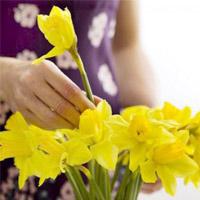 Phong thủy khi cắm hoa trong nhà