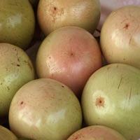 Mẹo chọn kiwi thế nào mới chuẩn?-5