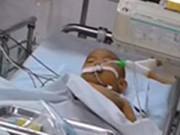 Tin tức - Nước mắt người cha có hai con bị nhiễm độc đang nguy kịch