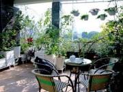 Nhà đẹp - Cải tạo vườn sân thượng trong 3 tuần đẹp mê ly