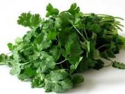 Sức khỏe - Lợi ích sức khỏe của rau mùi ít người biết đến