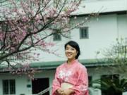 Tin tức - Ngắm hoa anh đào Nhật Bản giữa Thủ đô