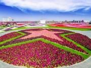 Ngắm để thèm - Ngất ngây vườn hoa Dubai diệu kỳ lớn nhất thế giới