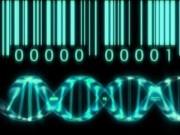 Tin tức - ĐH Công nghệ phân tích thành công hệ gen một gia đình Việt