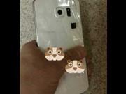 """Eva Sành điệu - Samsung Galaxy S6 lộ ảnh """"nửa kín nửa hở"""" trước giờ G"""