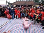 Tin tức - Người phát ngôn Chính phủ lên tiếng về lễ hội chém lợn