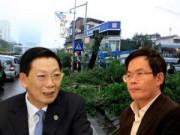 """Tin trong nước - Chặt 6.700 cây xanh: Chủ tịch HN trả lời """"thư ngỏ"""""""