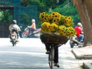 Tin trong nước - Năm 2015: Nắng nóng xuất hiện sớm nhưng ít gay gắt