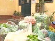 Hà Nội: Biến rau bẩn thành rau an toàn 'tuồn' vào trường học