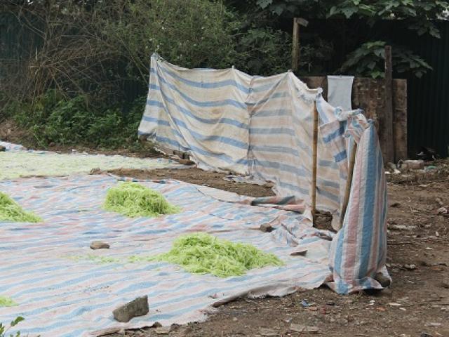 Phạt tiền, tiêu hủy mứt phơi gần nhà vệ sinh ở Xuân Đỉnh