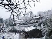 Tin tức - Ngắm Sapa ngập tràn trong tuyết trắng