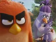 """Xem & Đọc - Cười rụng rốn với trailer """"siêu dễ thương"""" của Angry Birds"""