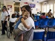 Tin tức - Virus Zika và bệnh teo não được phát hiện như thế nào?