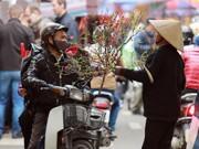 Tin tức - Dư vị Tết xưa tại chợ hoa đào Hàng Lược