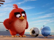 """Không thể nhịn cười với """"thánh nhọ"""" của """"Angry Birds""""!"""