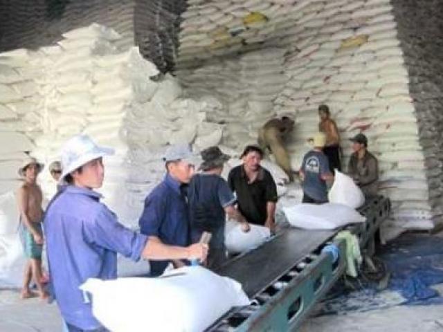 Giá gạo Việt Nam bằng gạo Thái Lan