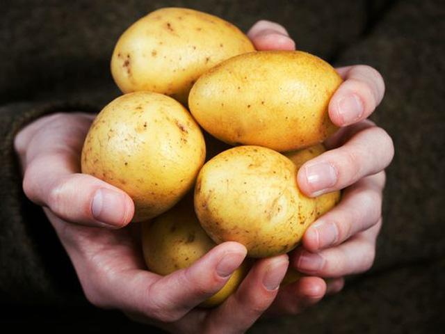 Phát hiện chất cực độc khi để khoai tây trong tủ lạnh