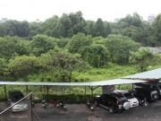 """Tin tức - Hà Nội """"quyết"""" xây bãi đỗ xe ngầm hơn 10.000 m2 trong công viên Thống Nhất"""
