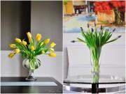 Nhà đẹp - Mê mẩn tài cắm hoa Tulip của mẹ bầu Việt ở Mỹ