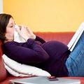 Cây nhà lá vườn trị cúm cho mẹ bầu