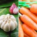 Muốn thụ thai, đừng ăn tỏi, cà rốt!