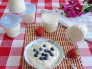 Bếp Eva - Cách làm sữa chua giải nhiệt mùa hè