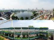 Nhà đẹp - Hà Nội: Phát thèm vườn rau tầng 10 nhìn ra hồ lộng gió