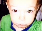 Làm mẹ - Ly kỳ bức ảnh chụp bằng Iphone cứu mạng em bé 2 tuổi