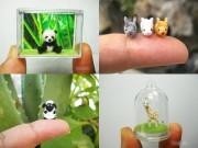 Nhà đẹp - Báo nước ngoài ngưỡng mộ thú móc mini của gia đình Việt