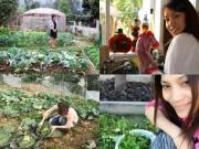 Nhà đẹp - Thu Phương, Mỹ Linh thích thú trồng rau sạch tại nhà