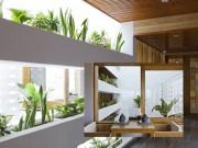 Nhà đẹp - Khách sạn 12 tầng phủ xanh nổi bật với bể bơi lưng trời