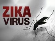 Tin tức - Kết quả cuối cùng 4 ca nghi dương tính với virus Zika