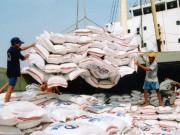 Mua sắm - Giá cả - Trung Quốc đẩy mạnh mua gạo Việt