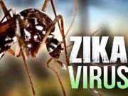 Tin tức - Ngoài ảnh hưởng não, người bệnh có thể bị liệt do virus Zika