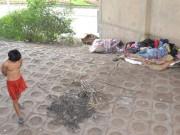 Tin tức - Hình ảnh thê thảm của 2 người đàn ông vô gia cư dưới gầm cầu Vĩnh Tuy