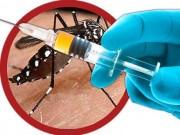 Tin tức - WHO phê chuẩn vắc xin chống sốt xuất huyết đầu tiên