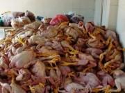 Tin tức - Loại ung thư nào liên hệ mật thiết với thực phẩm bẩn nhất?