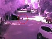 Video: Mẹ mải dùng điện thoại, bé 2 tuổi bị ô tô cán chết