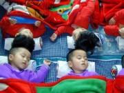 Tin tức - Cô gái Triều Tiên sốc vì giáo dục giới tính ở HQ