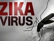 Tin tức - Một người Hàn Quốc nhiễm virus Zika sau khi trở về từ Việt Nam