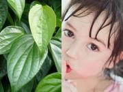 Làm mẹ - Dùng lá trầu vẽ giúp lông mày bé sơ sinh đậm đẹp?