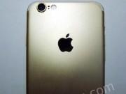 Eva Sành điệu - Lộ iPhone 7 bản gold, màn hình 4,7 inch